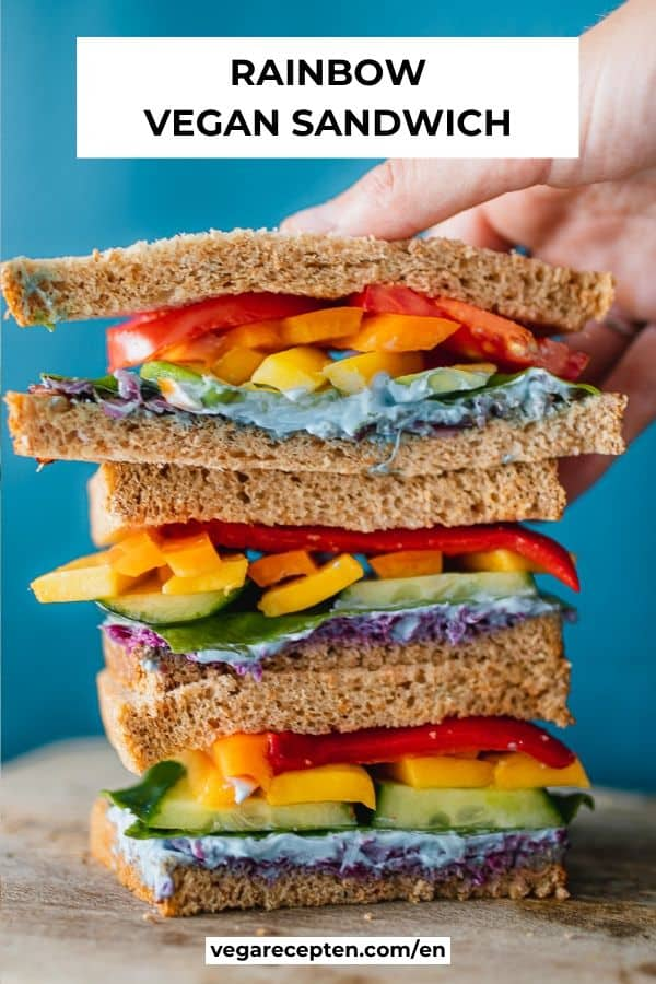 rainbow vegan sandwich