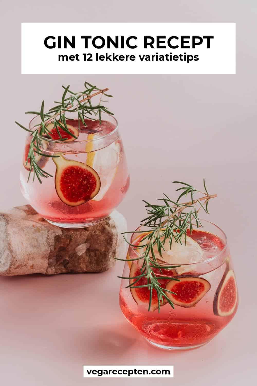 gin tonic recept met variatietips