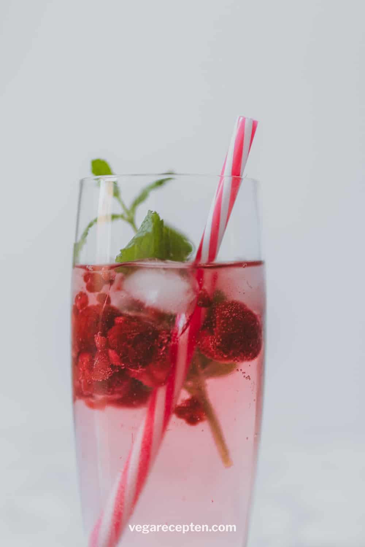 Gin tonic framboos munt