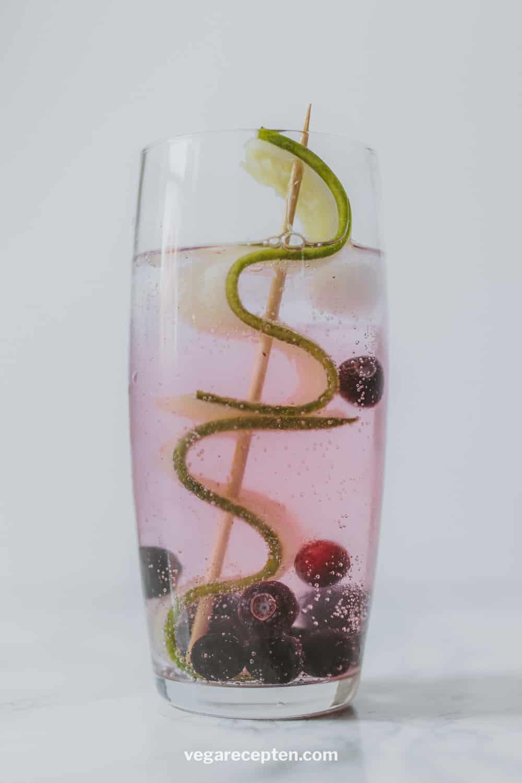 Gin tonic komkommer bosbes blauwe bes