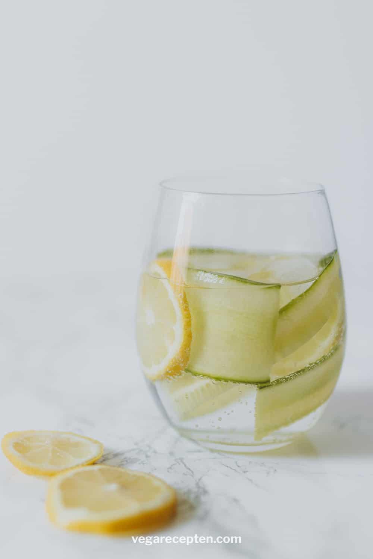 Gin tonic komkommer citroen