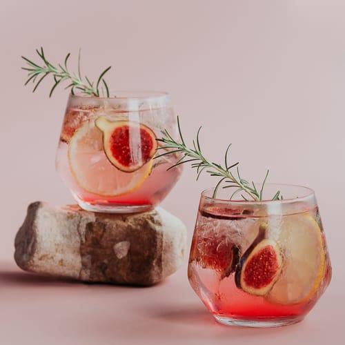 beste gin tonic recept